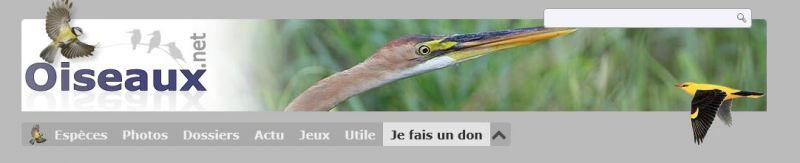 """<a href=""""https://www.oiseaux.net"""">lien vers oiseau.net</a>"""