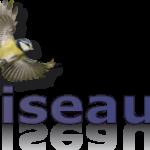 lien vers oiseaux.net