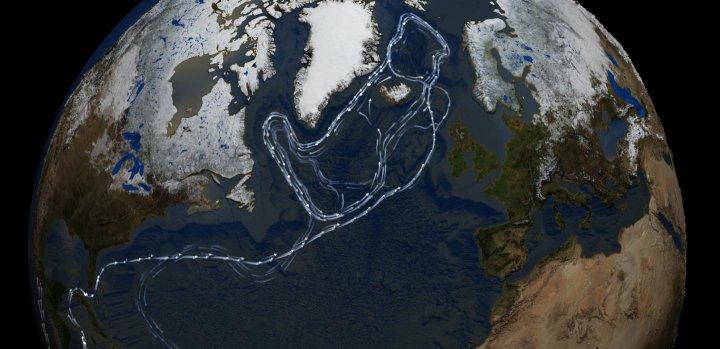 courant océanique