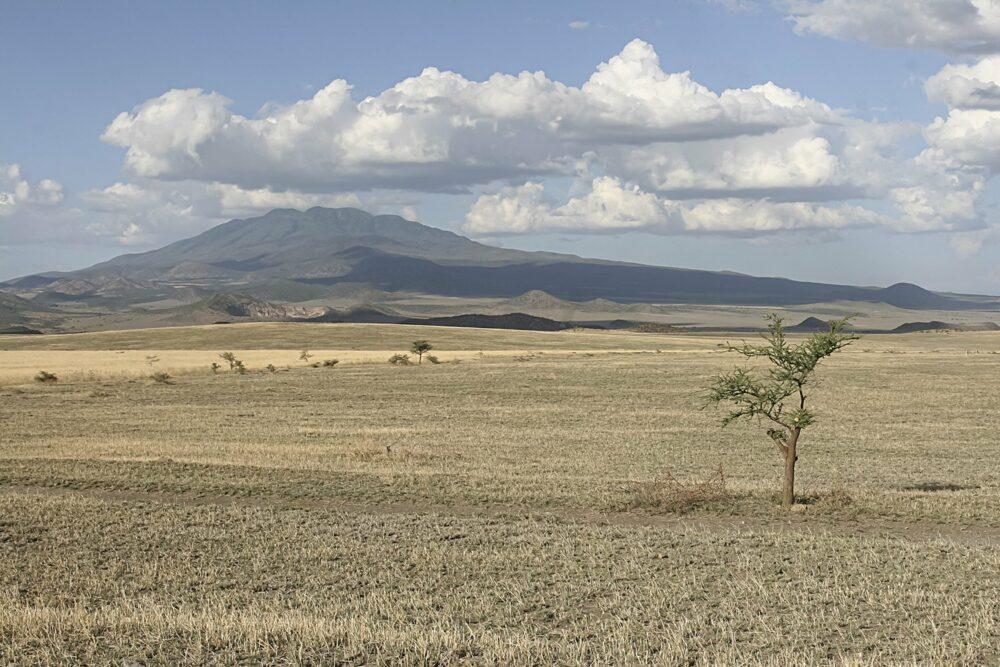tanzanie:kilimandjaro